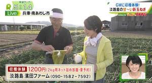 関西テレビ | 報道ランナー「わがまちLIVE ジュリアのイチオシ」のコーナーにて、てっちゃんの淡路島新玉ねぎが紹介されました!